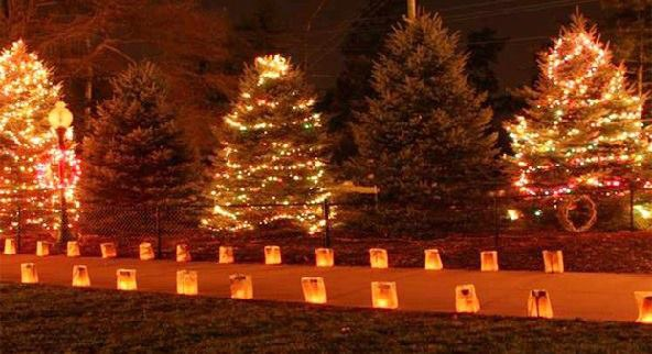 Lights at Miller Park Zoo last weekend on December  4th